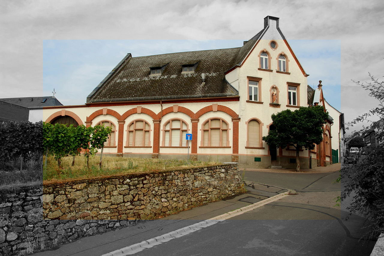 Weine aus Rheingau - Das Mutterland der Rieslinge